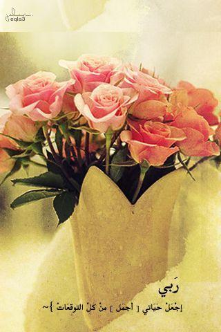 صور اكسسوارات بنات للايفون 2013 خلفيات كشخة للايفون 2014 صور رمزيات ايفون Flowers Rose Plants