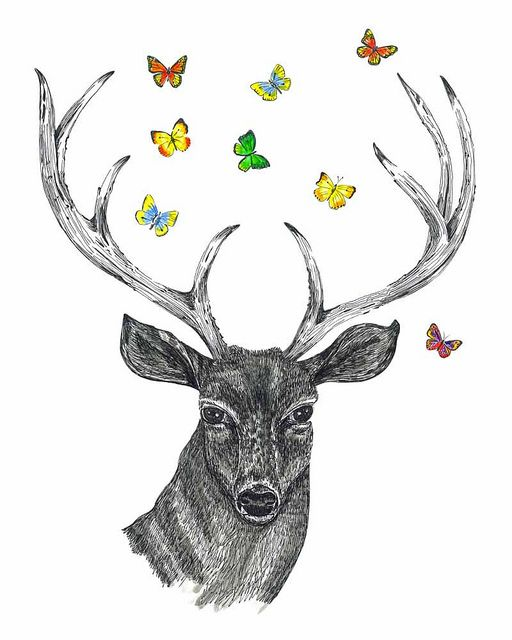 deer head drawing tumblr - photo #3