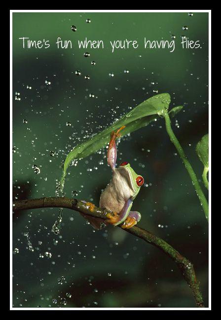 Singin' in the rain, just singin' in the rain...