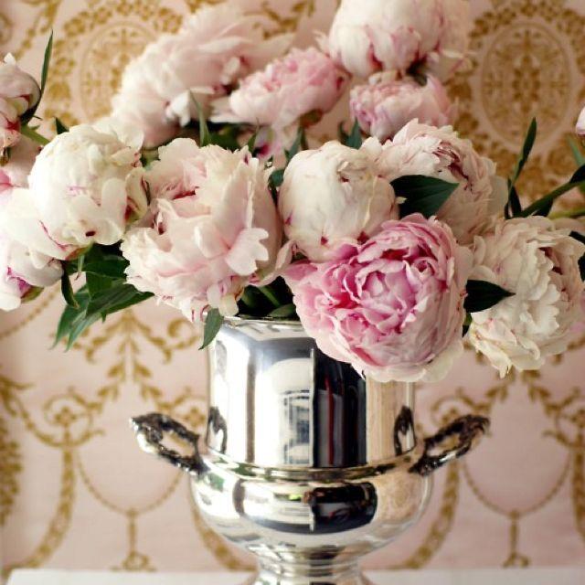 El día que quieran darme flores: Peonies.
