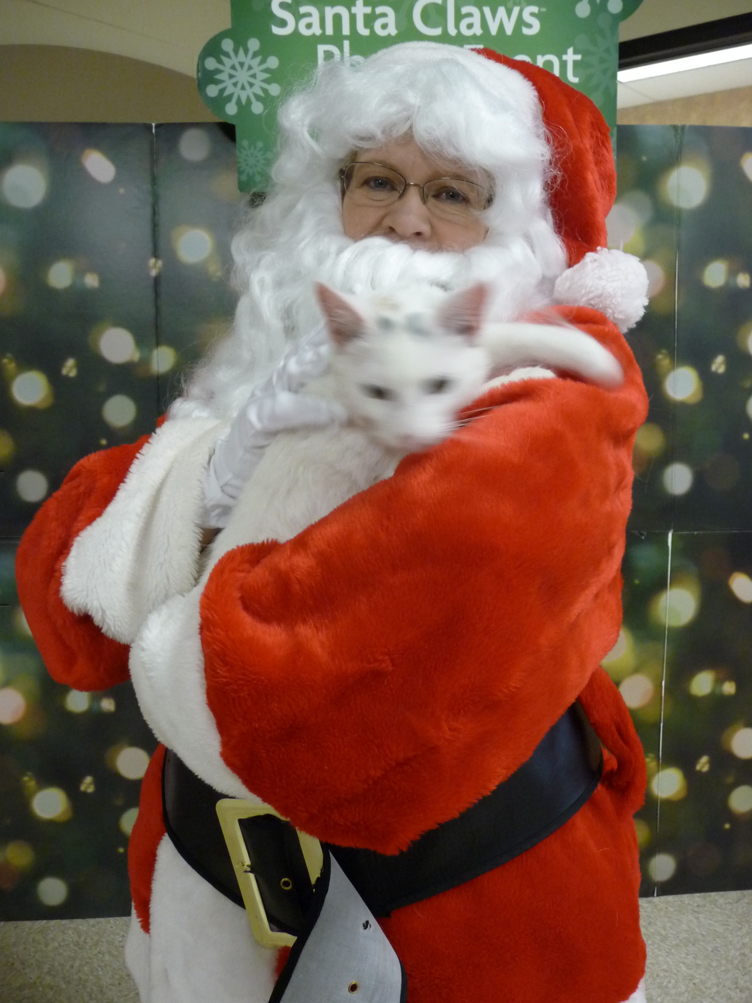 Petsmart Santa (me) #pinitforpetsmart | Character, Zelda ...