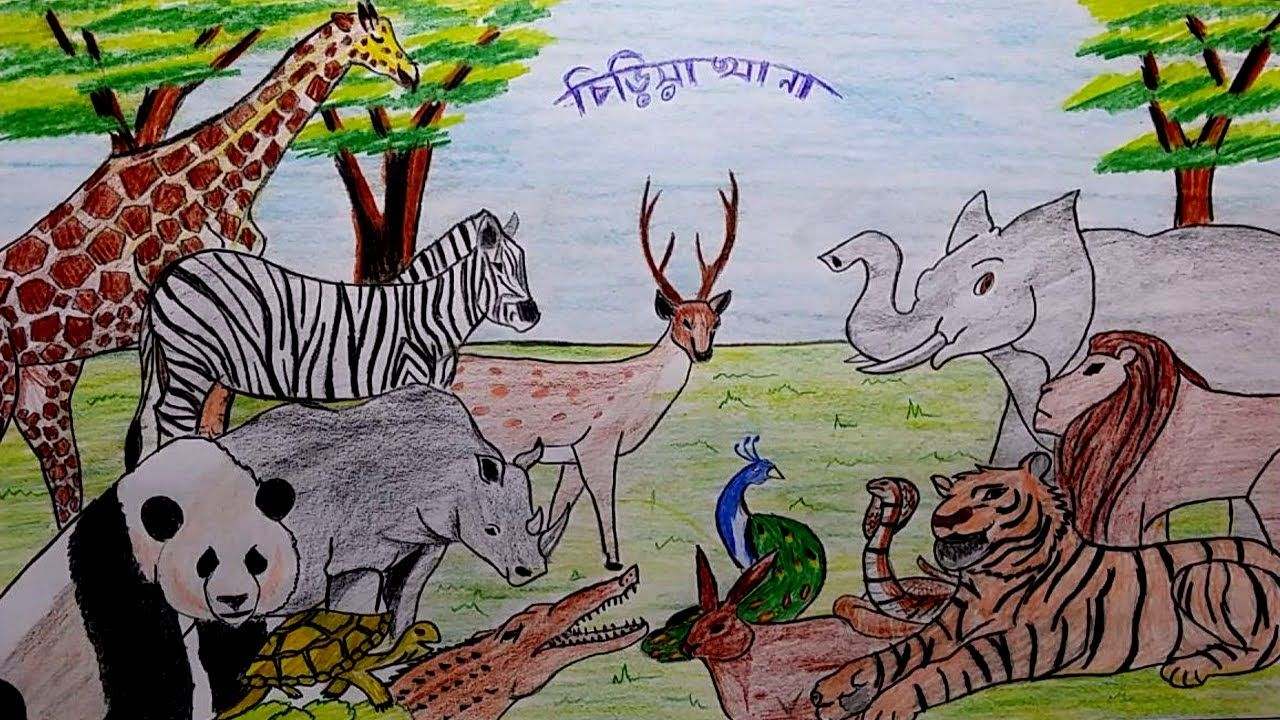 Learn How To Draw A Scenery Of Zoo Step By Step Youtube Zoo Drawing Easy Drawings Easy Drawings For Kids
