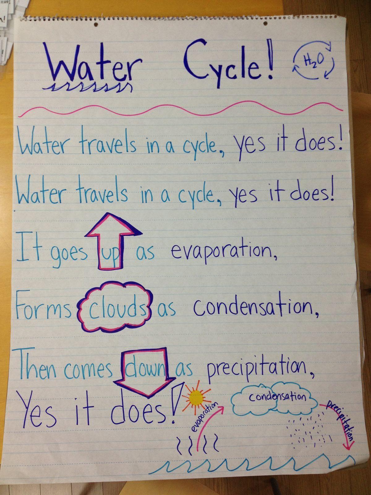 B576a73d4a6d40425e7dbf69b14bcdcd Jpg 1 200 1 600 Pixels Water Cycle 5th Grade Science First Grade Science