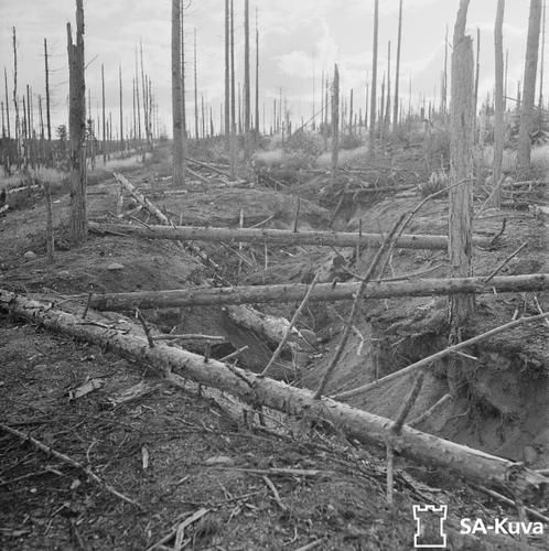 Finnish Trench At The Battlefield Of Summa Which Was Part Of The Mannerheim Line During The Winter War 1939 40 Summa Karelian Isthmus