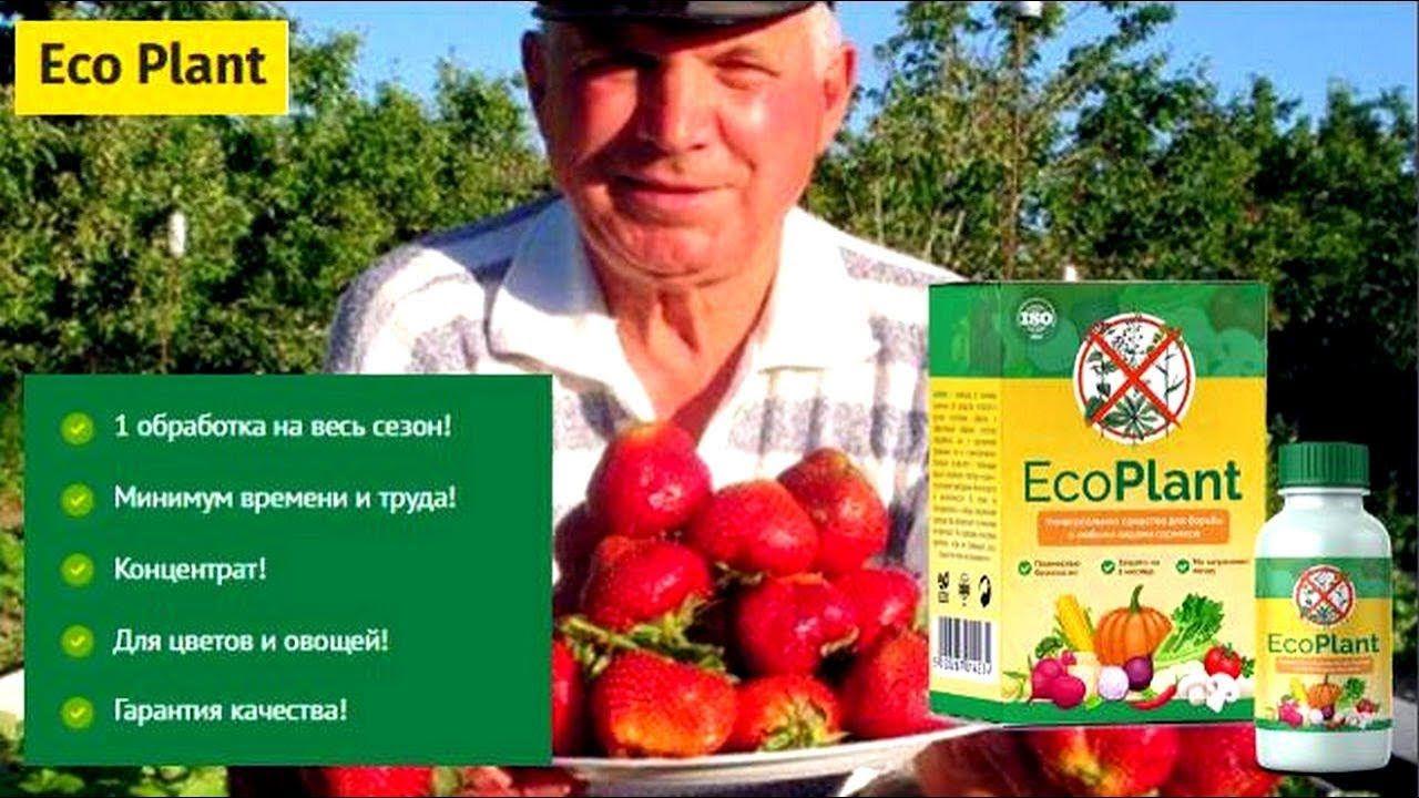 Eco Plant мощнейшее против сорняков в Альметьевске