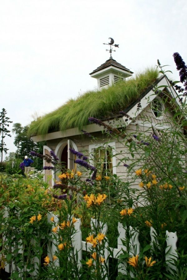 Dachbegrunung Gartenhaus Exterior In Grun Pinterest