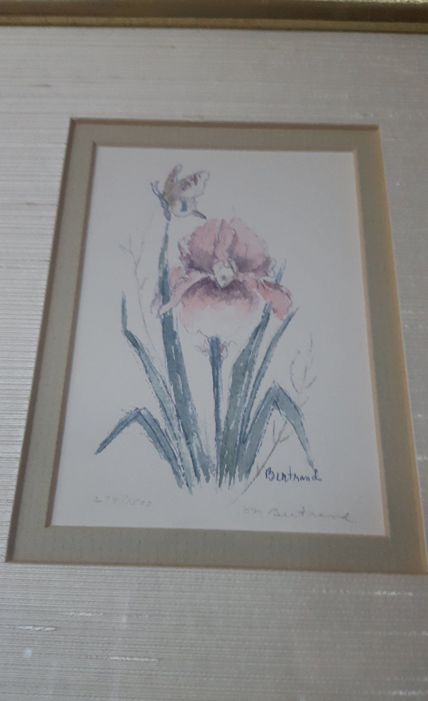 Watercolor Painting Framed Iris Flowers By Mary Bertrand Etsy Painting Frames Iris Painting Iris Flowers