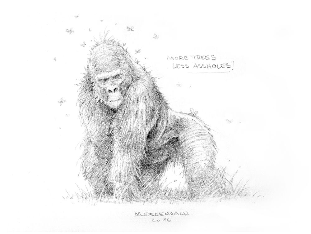 Gorilla Gezeichnet