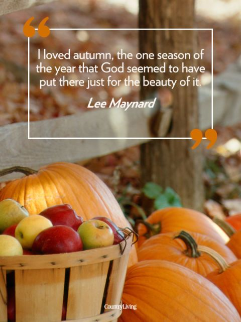 Wonderful Everything That Makes Fall The Best Season, Put Into Words.