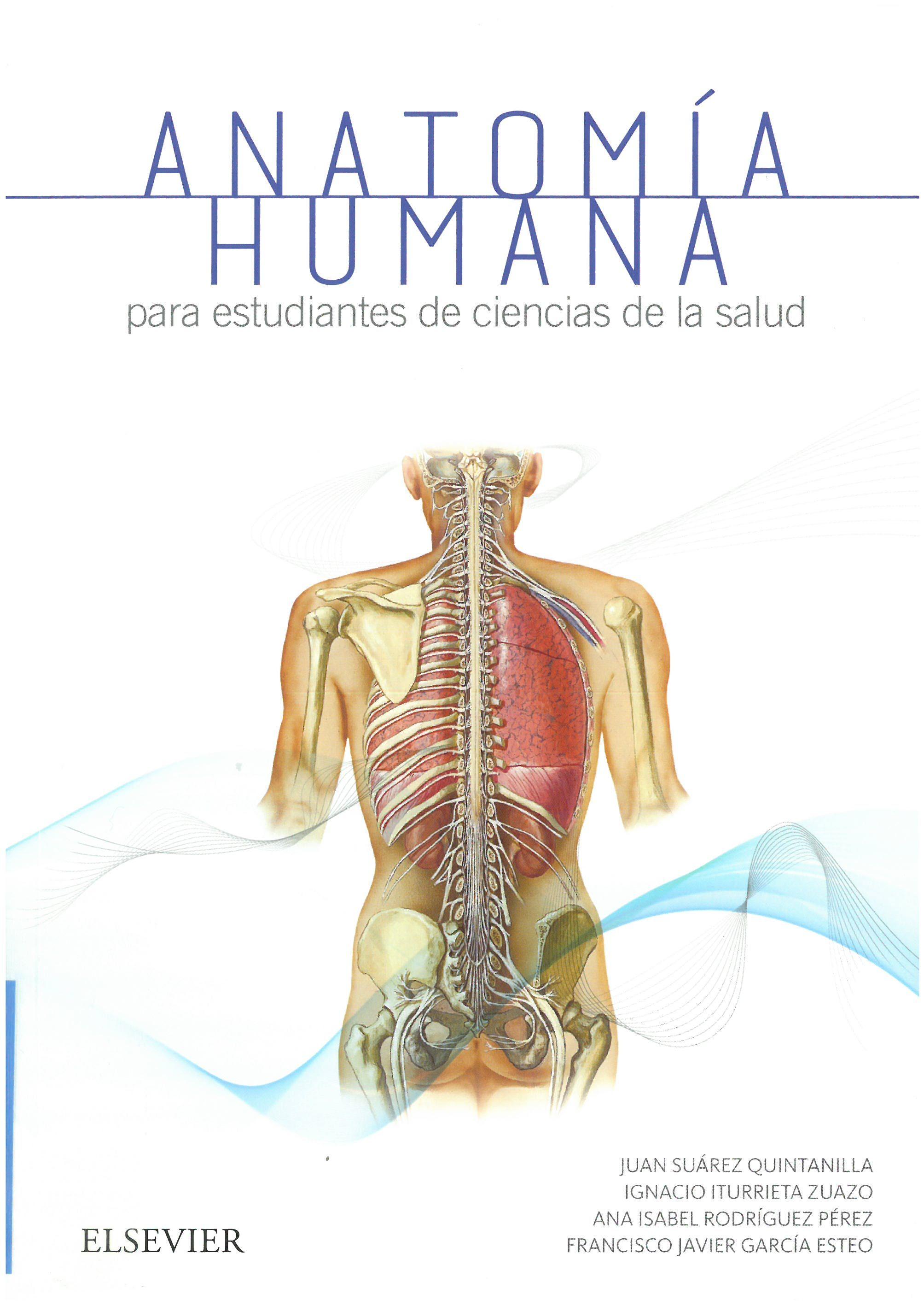 Anatomía humana para estudiantes de ciencias de la salud ...