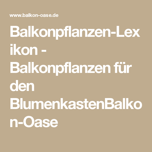 Balkonpflanzen-lexikon - Balkonpflanzen Für Den Blumenkastenbalkon ... Gartnern Auf Dem Balkon Frische Gestaltungsideen Fur Ihre Personliche Oase