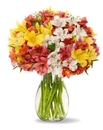 Great Birthday Delivery Gifts Ideas Flowers And Cake Enjoy Be Happy