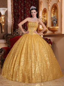 aa65bf97ced Shimmery Exquisite Ball Gown Sequins Gold Quinceanera Dress - Quinceanera  100