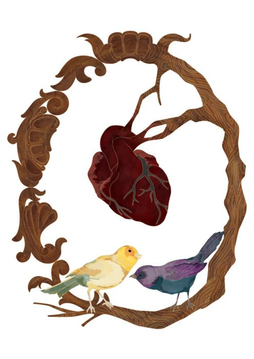 Two Birds And A Hear Drawing By Victor Rissatto For A T Shirt Design Contest Corazones