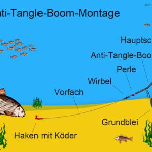 Haarmontage | Fische angeln, Angeltipps, Angeln