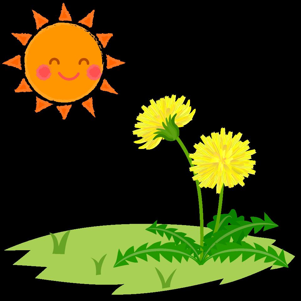 太陽とたんぽぽ | イラスト, 太陽のイラスト, たんぽぽ