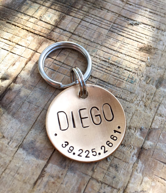 Custom Dog Tag Hand Stamped Dog Tag Pet ID Tag in 1