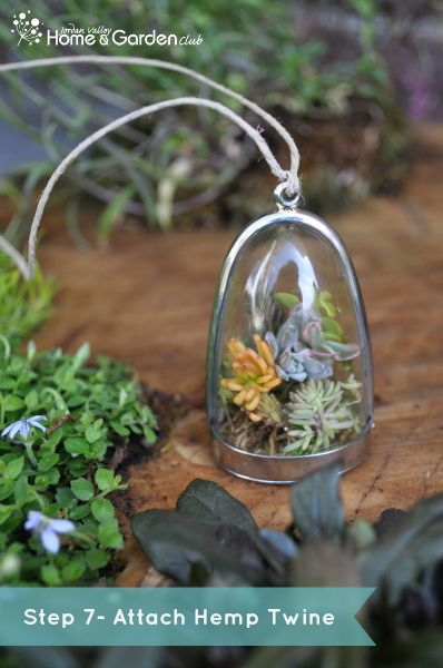 DIY Terrarium Necklace Tutorial - I really want to make this!