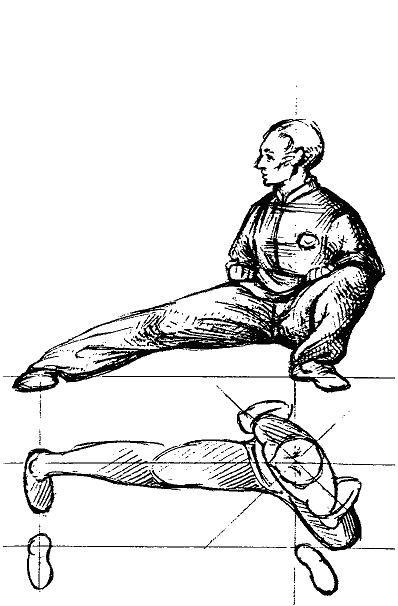 Kung Fu Signification shao lin quan eight basic stances – phoenix dragon kung fu academy