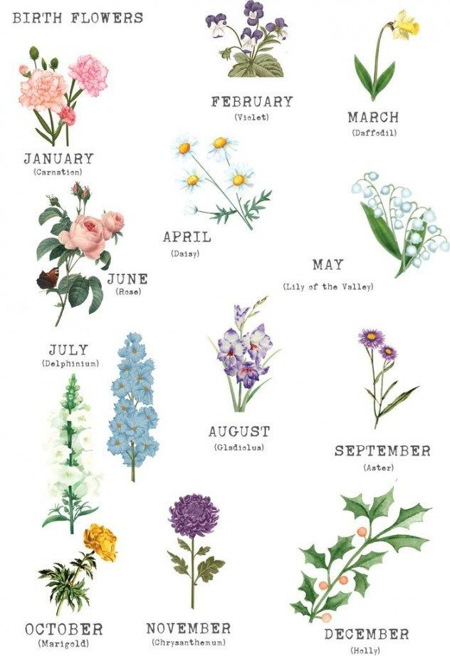 12 Things Nobody Told You About Birth Flowers Birth Flowers Https Ift Tt 2gwocrs Birth Flowers Birth Month Flowers Birth Flower Tattoos