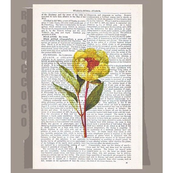 Yellow PEONY Artwork on a page from vintage Dictionary -Upcycled Book Print