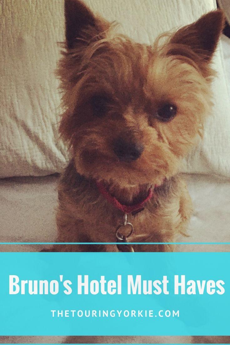 Bruno S Hotel Must Haves Pet Travel Dog Travel All Disney Parks