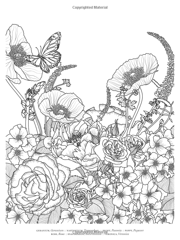 Veranda Flowers A Coloring Book Veranda 9781618372376 Amazon Com Books Abstract Flower Art Flower Coloring Pages Coloring Books