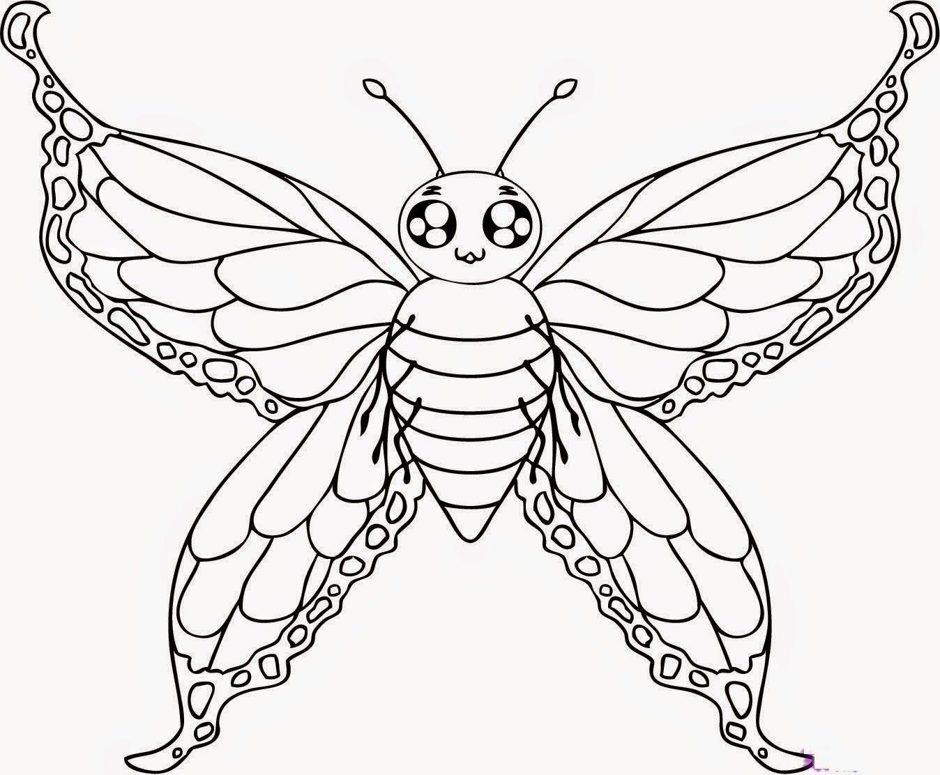 Beautiful Colour Butterflies Drawing Hd Wallpaper Butterfly Coloring Page Butterfly Drawing Cartoon Butterfly