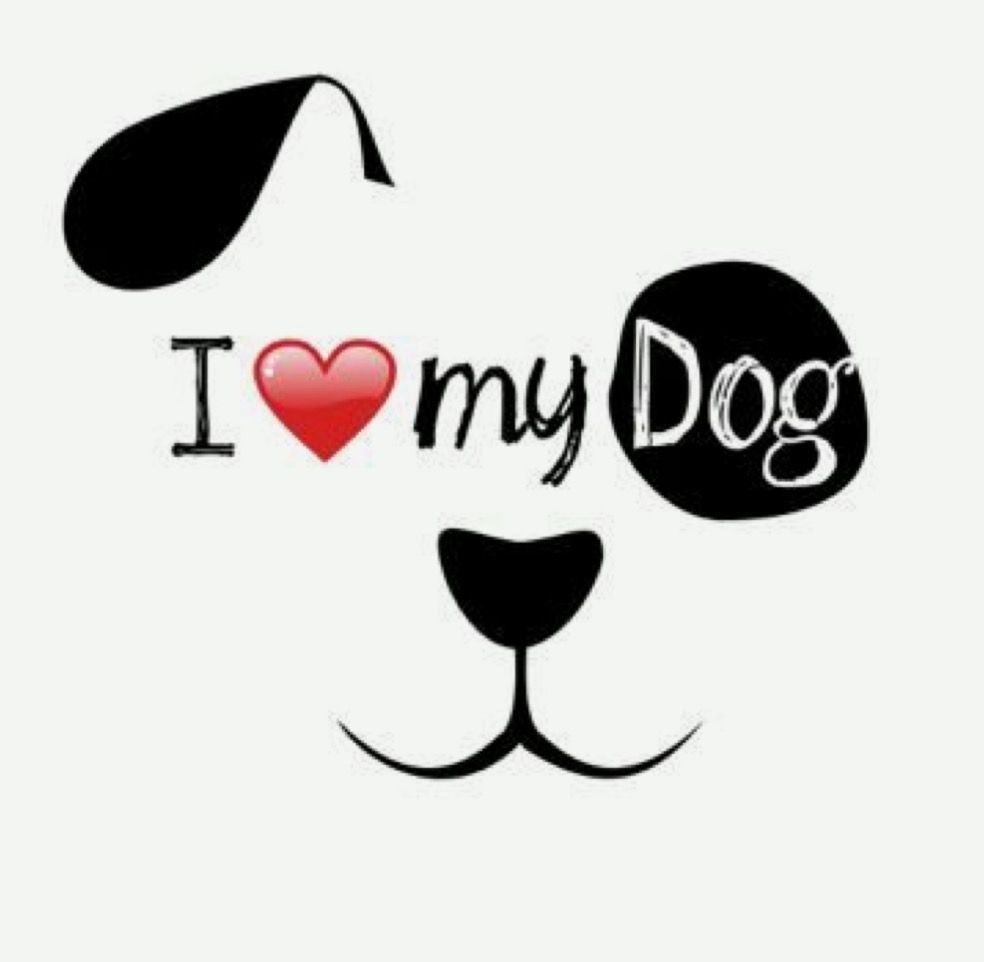 Картинка с надписью моя собачка, милой девочке открытка