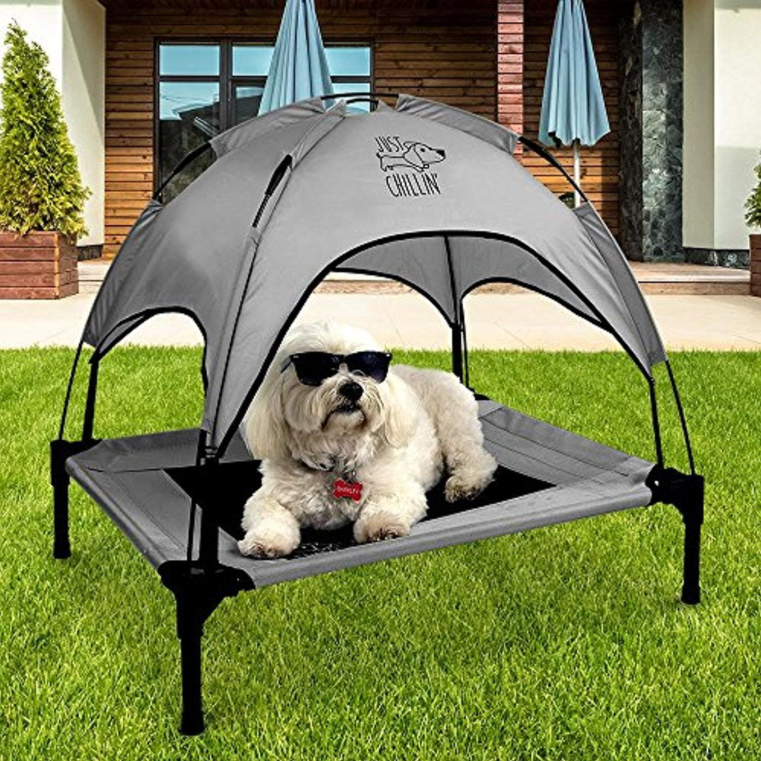 Floppy Dawg Just Chillin Dog Cot With Canopy For Small And Medium Dogs Elevated Pet Bed For Indoors And Outdoors Is Outdoor Dog Bed Dog Cots Elevated Dog Bed