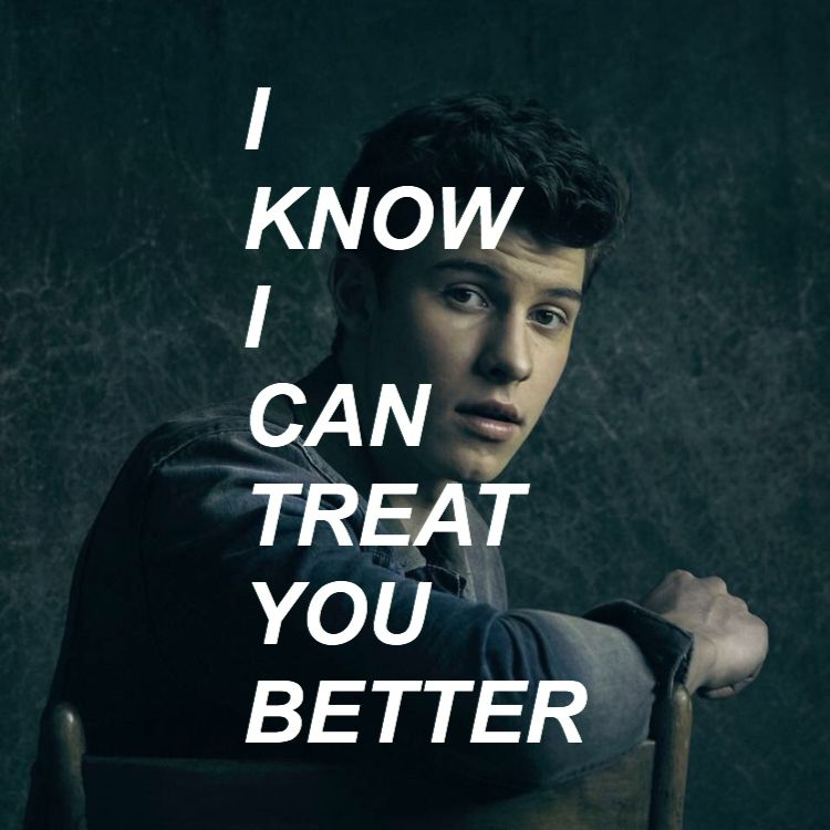Shawn Mendes- Treat You Better (lyrics). This song is absolutely perfect ❤️