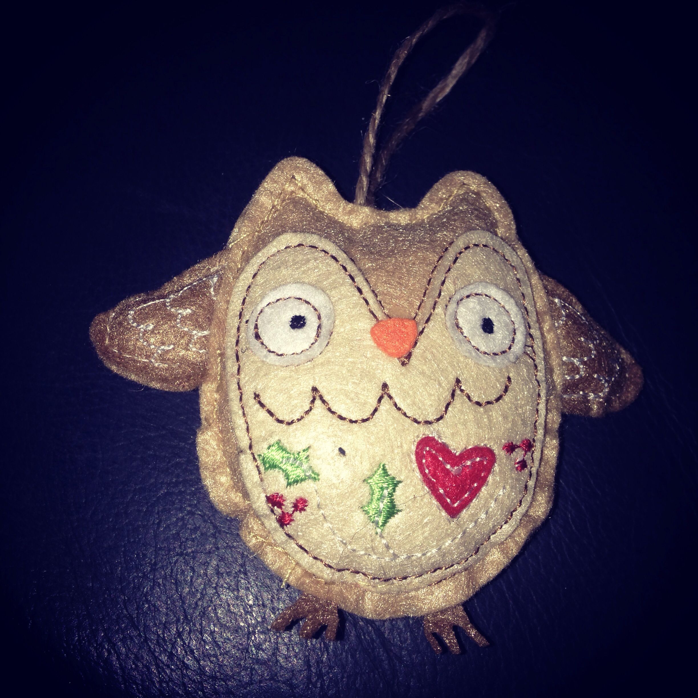 My daughter bought me this owl today for the Christmas Tree ... Cute !