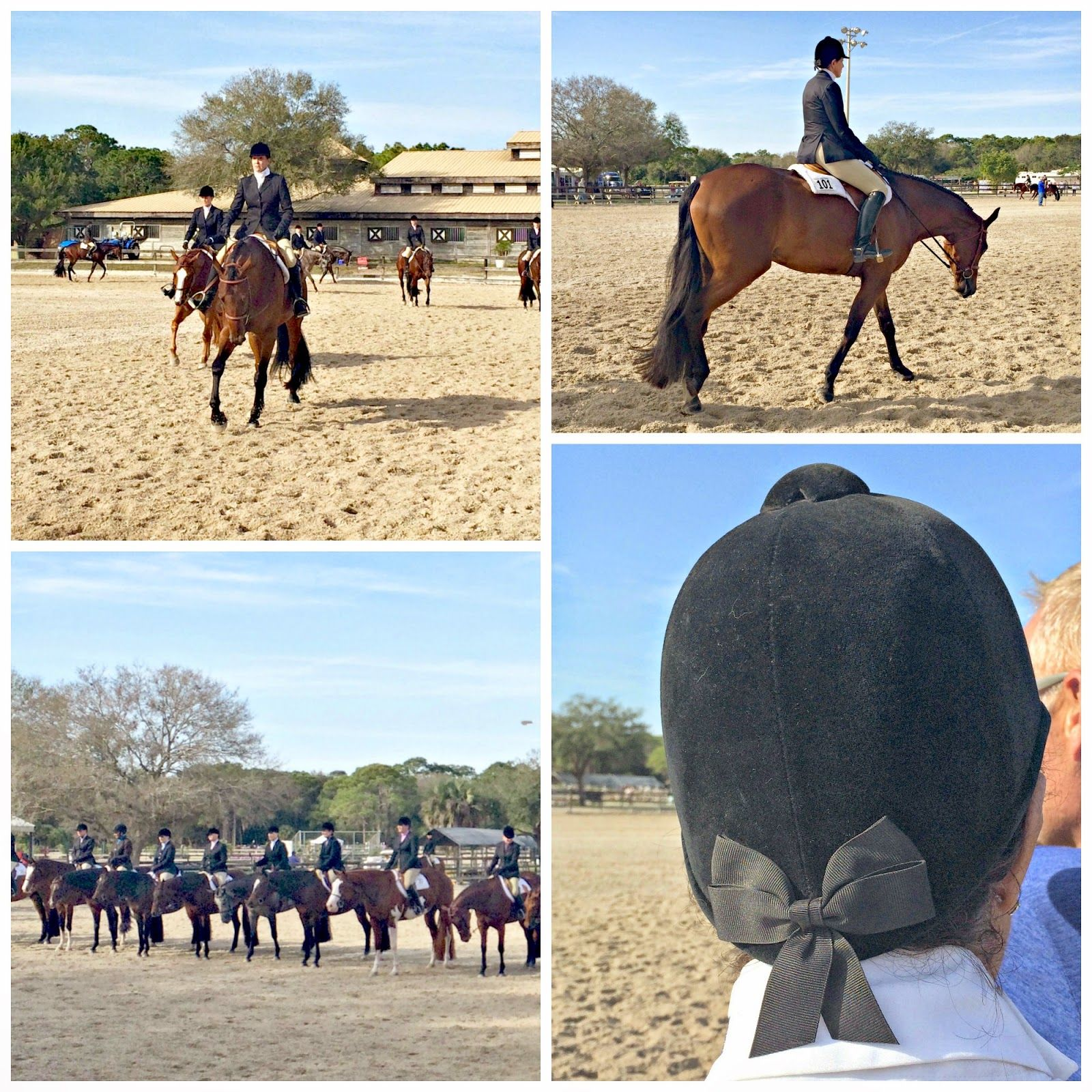 Patty's Pretty Things: Florida Horse Show