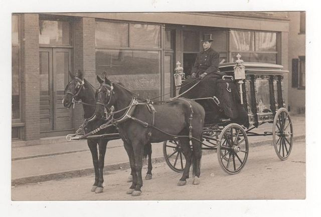 early 1900s horse drawn horse