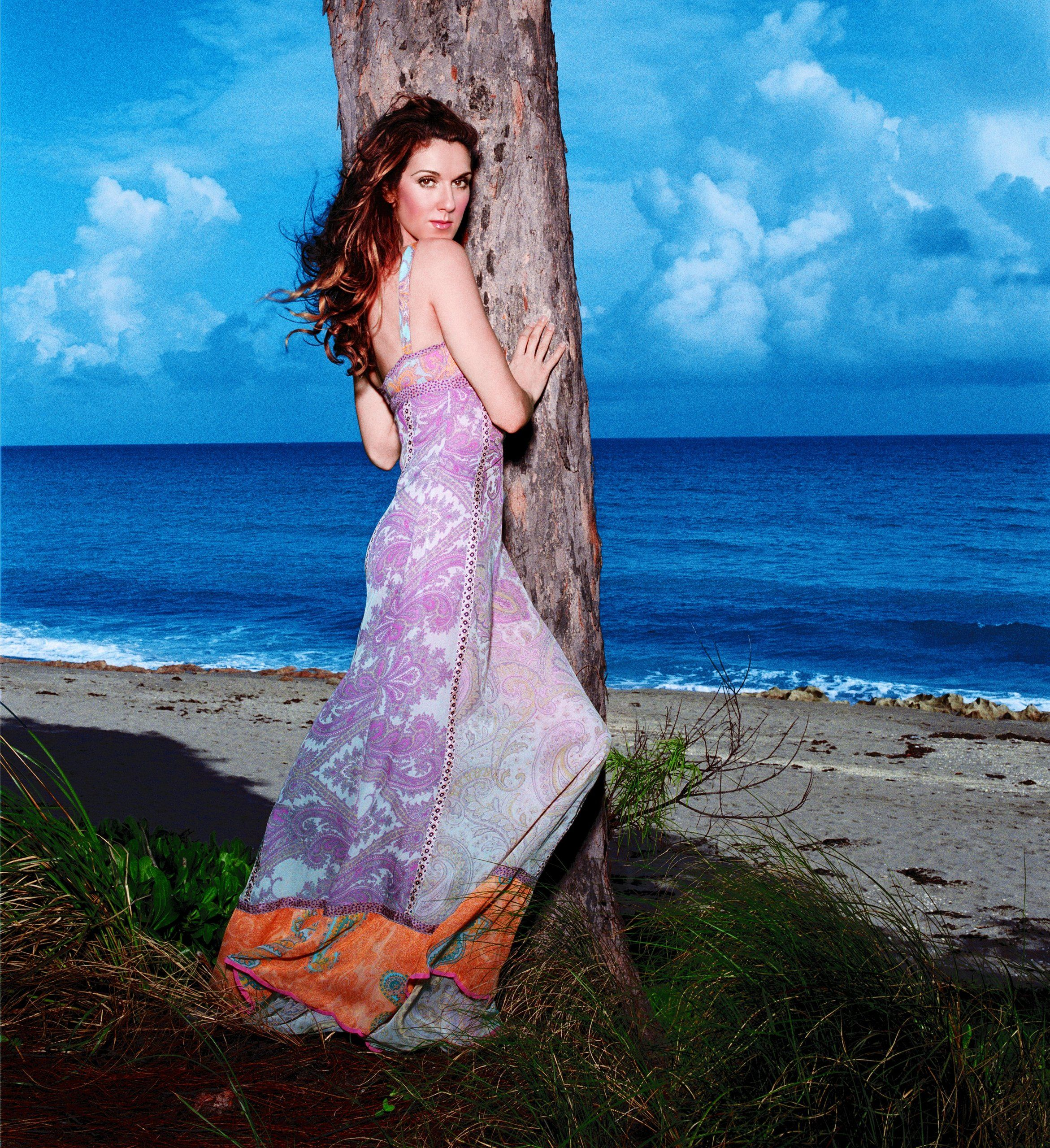 Celine Dion A New Day Has Come Photoshoots Buscar Con Google Celine Dion Celine Dion