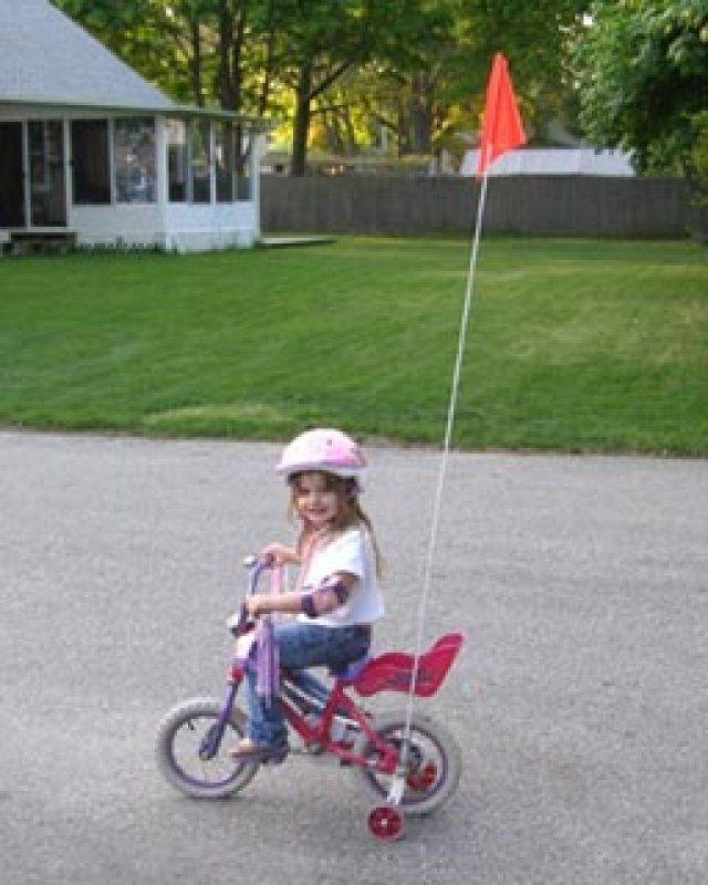 Bike Safety Flags | My Memories Toys | Bike, Baby strollers