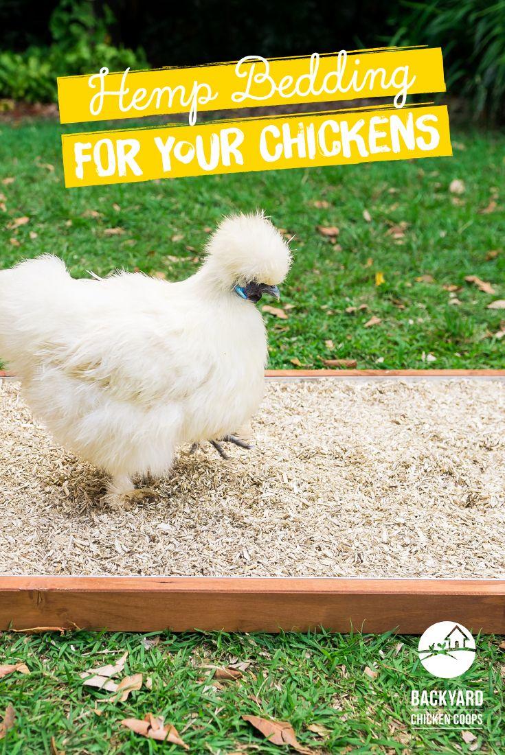 Hemp Nesting Box Bedding Nesting box, Chickens backyard