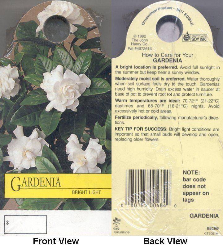 inspiring gardenia house plant. GARDENIA Care Card  PH Garden INSPIRATION Pinterest Gardenia
