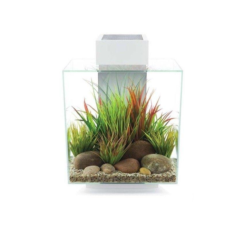 Fluval edge ii aquarium, wei