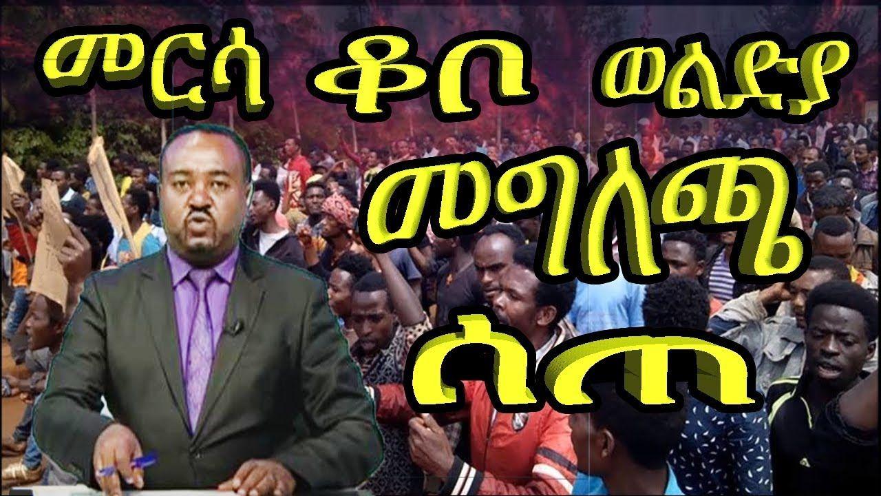 Ethiopian news today | አቶ ንጉሱ ጥላሁን ስለ መርሳ እና ቆቦ
