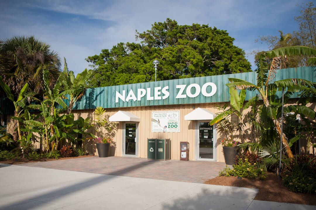 Historic Naples Zoo is a Top Attraction in Southwest