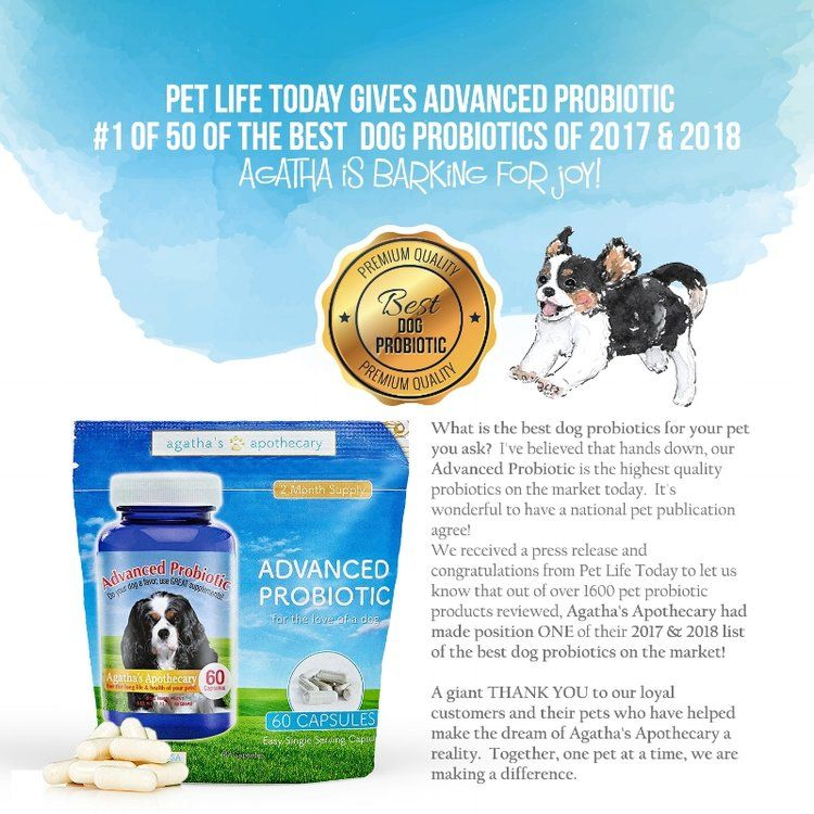 Agatha's voted best dog probiotic by Pet Life Today two