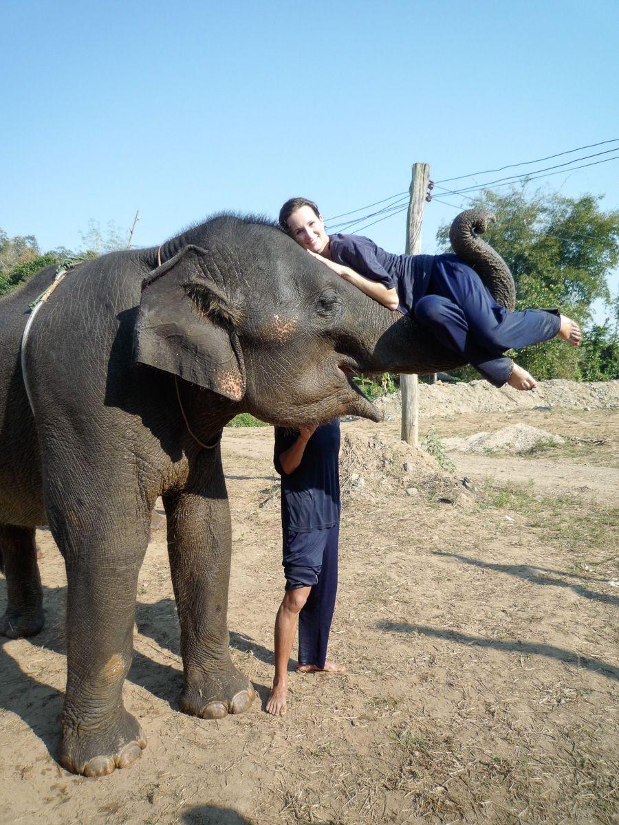 Memories Elephant Farm in Chaing Mai, Thailand