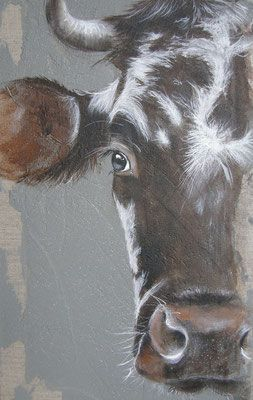 Une demi normande peinture - Vache normande dessin ...