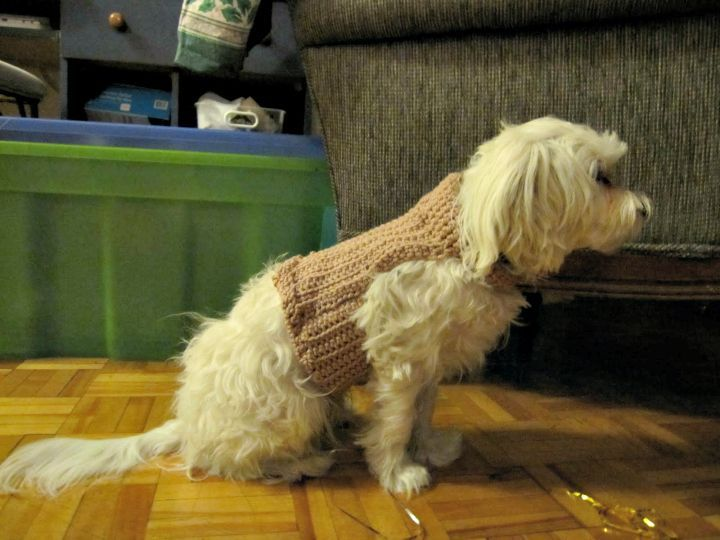 26 Free Crochet Patterns For Pets To Make Their Life Easier Easy