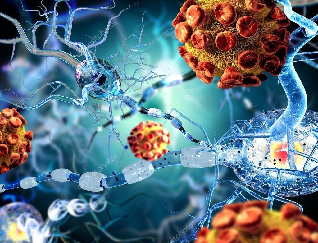 Nerve cells an viruses concept for Neurological Diseases tumors and brain surg
