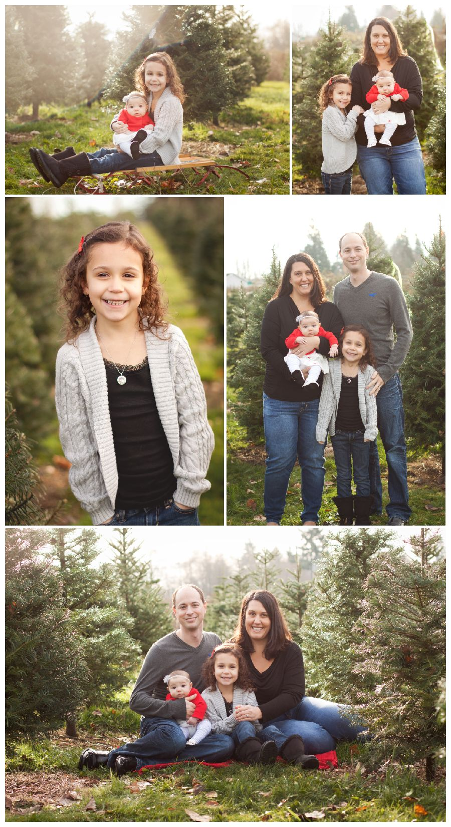 Christmas Tree Farm Mini Sessions.Christmas Tree Farm Mini Sessions Part 1 Puyallup Family