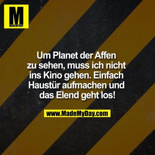 Um Planet der Affen zu ...