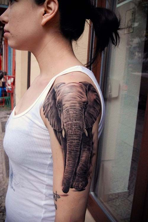 412c949d2 kadın üst kol fil dövmesi woman upper arm elephant tattoo 2 ...