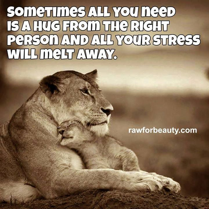 sometimes all yopu need is a hug from the right person and all your stress melt away